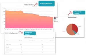 Brightcove in Blinkfire Analytics