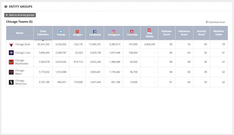 Blinkfire Analytics Entity Groups