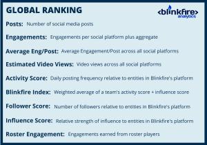 Blinkfire Analytics Terms