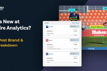 Blinkfire Analytics Brand & Asset