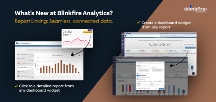 What's New at Blinkfire Analytics Part 2: Report Linking