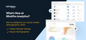 Blinkfire Analytics Twitter and Douyin Demographics