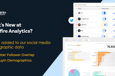 Blinkfire Analytics Twitter and Douyin Demographics